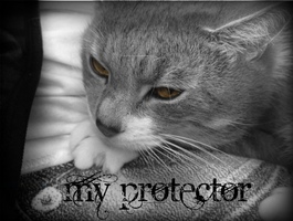 .:My Protector:. by Xbox-DS-Gameboy