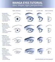 Manga Eyes Tutorial (sizes, shapes, ages...) by Tyaren