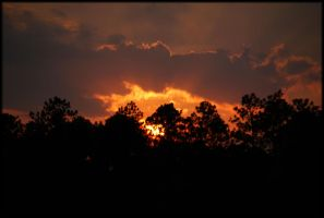 Sunset at Crestview 10-15-09 by LadyAliceofOz