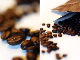 Coffee beans by TouchOfAutumn