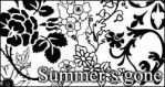 Summer's gone PS brushes by foley-resources