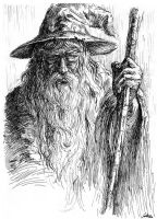 Gandalf by weremoon