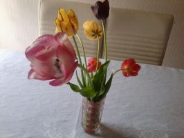 Tulips in a Vase by Icedragon300