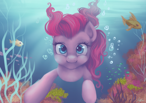Dive by Katyand