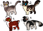 Free Cat Adopts CLOSED by InfectedZombieX