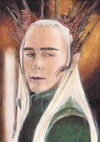 The Elven King by TessaChen