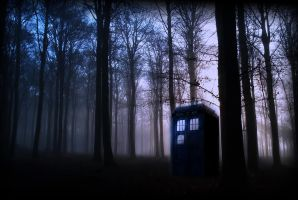 Tardis in the Forest by Steffari