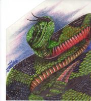 snake drawing by Zillahblack