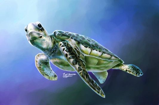 Sea Turtle by hanna-Aris