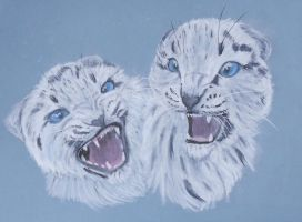 Snow leopards by Frootsalad