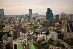View from Tokyo Tower 4 by MarcAndrePhoto