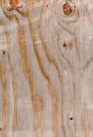 daily texture stock Wood 5 by kanderson137