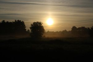 12-08-01 Sunrise 5 by Herdervriend