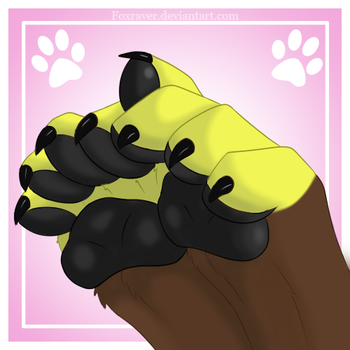 Paws by FoxRaver