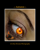 .:Autumn:. by DayDreamsPhotography