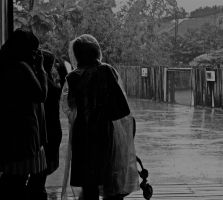 Rain at the Zoo. by gee231205