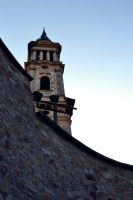 Last Rays Of Light by AllegnaPhotography