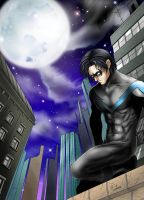 Nightwing by Autumn-Sacura