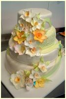 Wedding Cake by 6eki