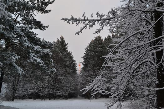 Flaming Fire Tower Above Winter Pine Woods by Double-of-Magrat