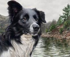 Enjoying the Trip by elektroyu