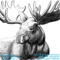 Arvin Bautista Sketches 2017 36/100: Elk by greasypigstudios
