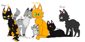My Warrior Cats by campfyre