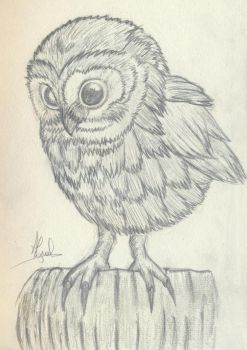 Baby Owl by WellSinisterART