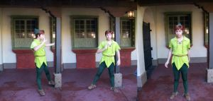 WDW Character: Peter Pan by wilterdrose-stock