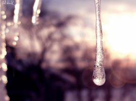 frozen moments by ad-shor