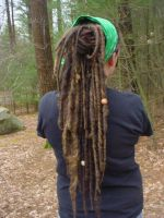 Long Dreads by Archer-1