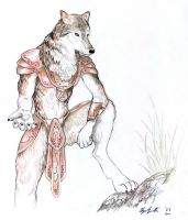 warrior wolf by Wolfsjal