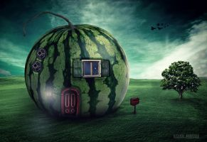 House of Watermelon by rdos11