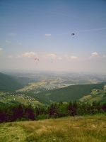 paraglides by cocarde