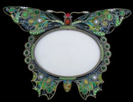 Butterfly Frame 2 by Penny-Stock