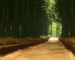 Bamboo Forest, Japan by Andywong75