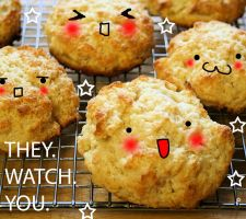 BISCUITS WATCH YOU by hynathia