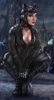 Batman Arkham City - Catwoman (Wet) by RuddsArt