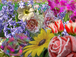 Floral Montage by Chocobubba