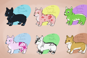 Cutie Corgi Adoptables Set 2 -SOLD OUT- by SeaDrops