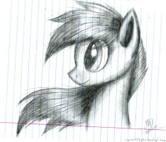 Pony by Kobra333