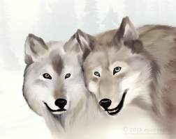 Winter, Wolves by miss-redfur