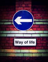 Way of life by 3TrianglesX