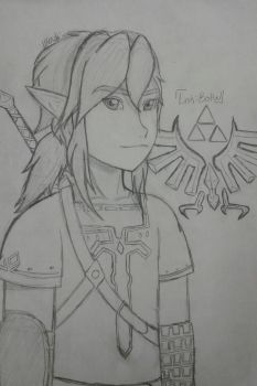 Link Botw by Allora2500