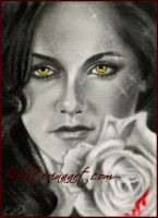 Breaking Dawn - ACEO by Katerina-Art
