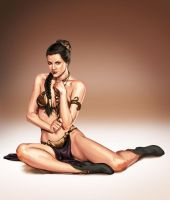 trinquette Oct12 Princess Leia by justsantiago
