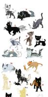 27 Cat Adopts by predwolf95