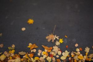 moscow fall by MotyPest