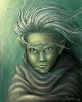 Young Elf by garciar