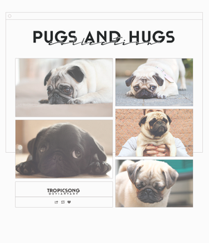 Pugs and Hugs Collection [ wallpapers pack ] by tropicsong
